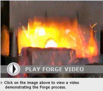 Forge Video Image